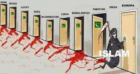MM Islam