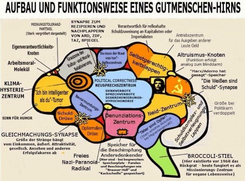 https://conservo.files.wordpress.com/2017/03/aufbau_und_funktionsweise_eines_gutmenschen-hirns.jpg